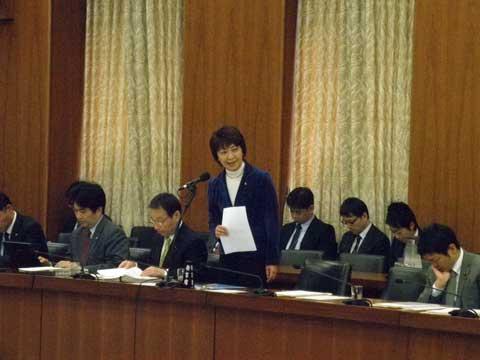 総務委員会20121108