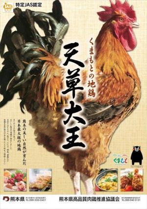天草大王 くまもと地鶏