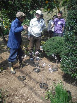 おーぷん里庭 2010年3月 小松しんちゃん農園