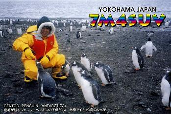 ペンギン 1997