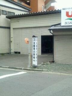 20111103_102700.jpg
