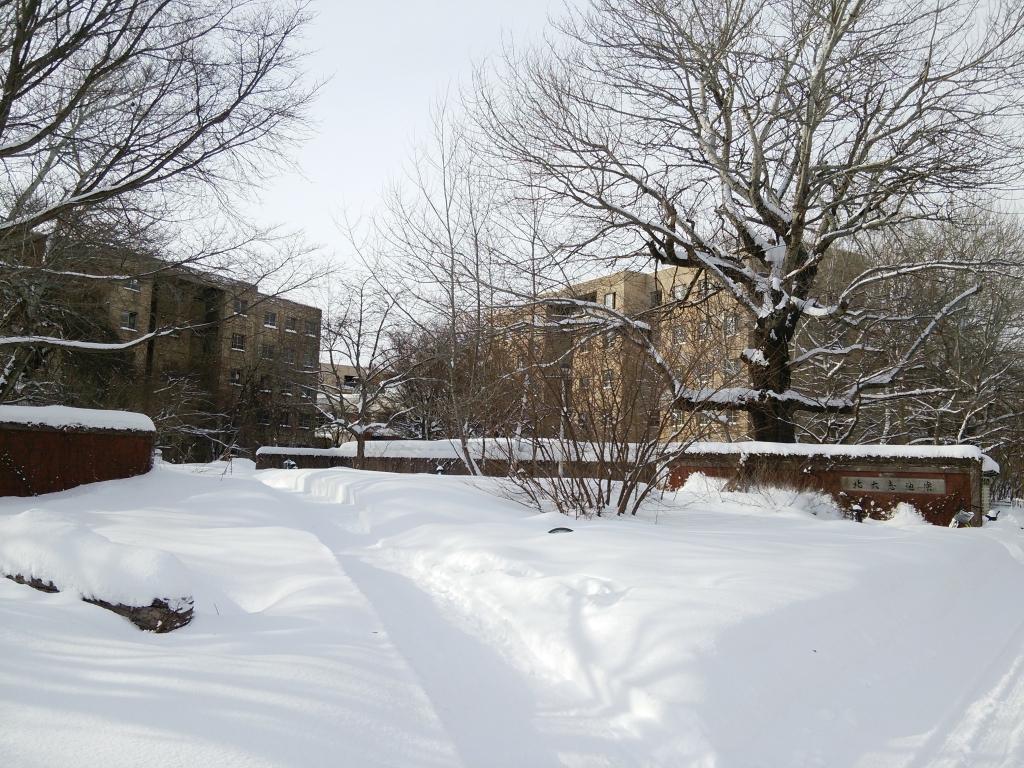 雪の恵迪寮正面