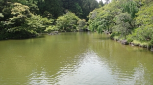 成田山公園 龍智の池