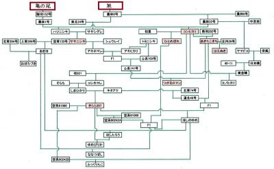 米の品種改良図