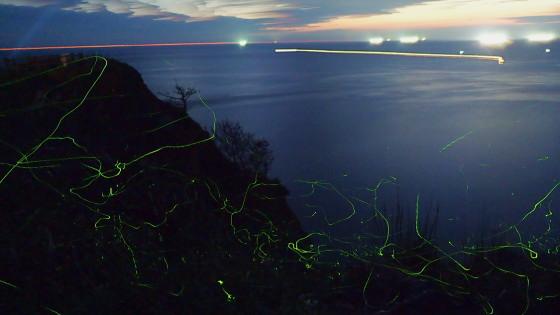 アキマドボタルの光跡