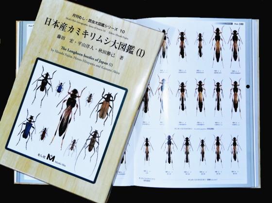 日本産カミキリムシ大図鑑