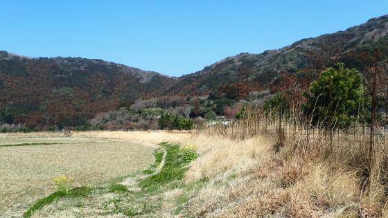 フチグロトゲエダシャクの生息環境
