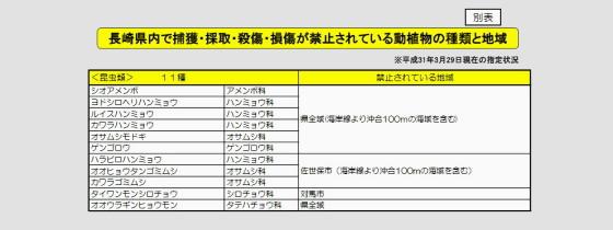 長崎県指定 採集禁止昆虫