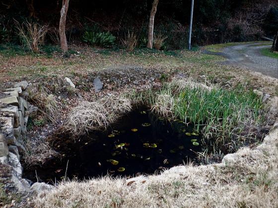 豊玉町の水場