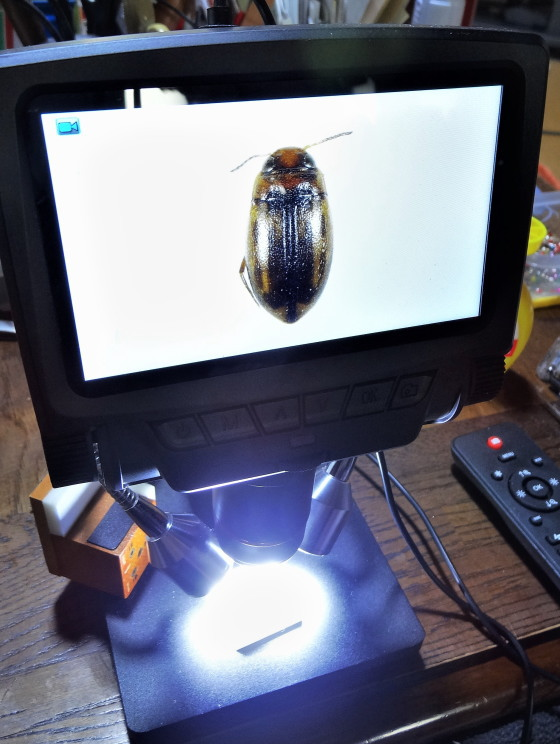 デジタル顕微鏡 ADSM301