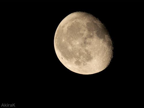 接眼レンズ無し月