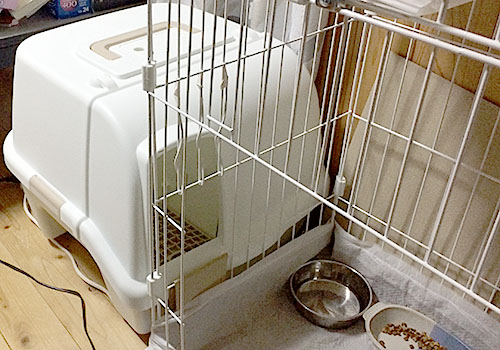 散らかりにくい猫トイレ