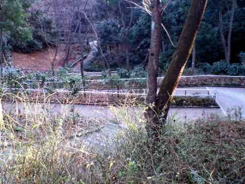 東高根森林公園02