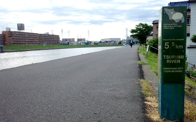 鶴見川インターバル走