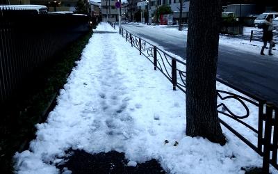 残雪のインターバル走01