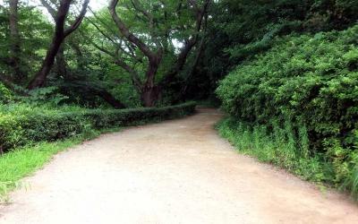 三ツ池・山コース