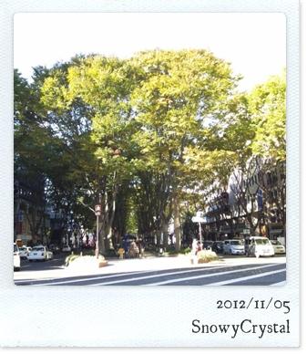 CameraZOOM-20121103090713978.jpg