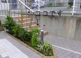一階階段横の植栽地