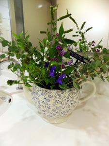 トイレの花1