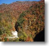 仙人ダムの紅葉