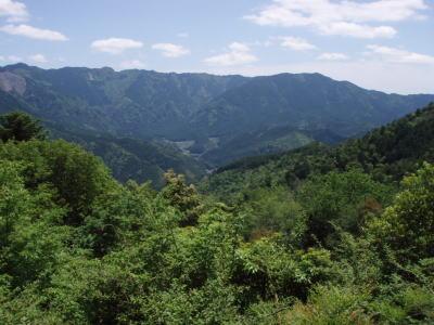 桜茶屋跡からの景色
