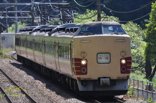 183系富士芝桜まつり号