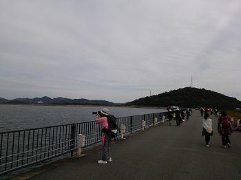 2014-11-08 11.26.39.jpg