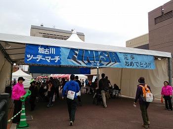 2014-11-08 14.55.05.jpg