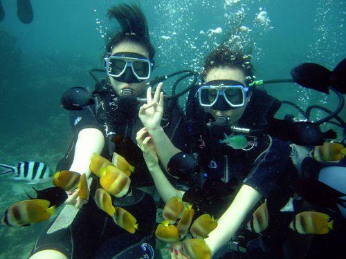 那覇市ダイビング一人少ない人数でも完全貸切できる観光客に人気のショップ