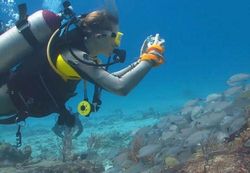 夏休みは那覇市で観光&ダイビング体験(家族で貸切できる)オススメのショップ。おじいちゃん、おばあちゃんも楽しめる