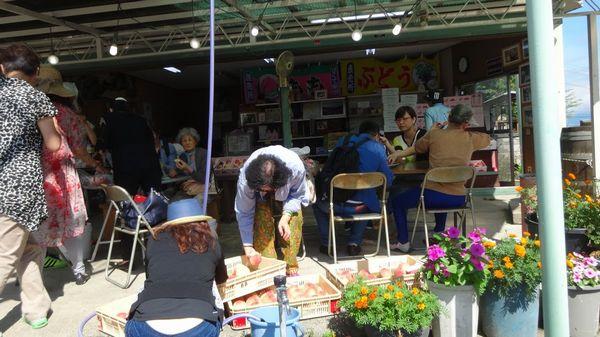 桃狩り食べ放題は幸せSNS投稿タイムラインが映える山梨御坂オススメ観光農園桃直売所