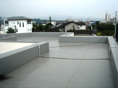 かるいちばんでの自社ビル屋上緑化1