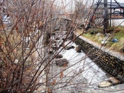 凍った小川