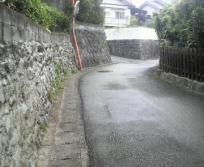 オーキッドビル付近の石垣2