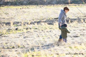 静岡県 柴田牧場(しばちゃんランチマーケット) 牛写真家の牧場訪問記