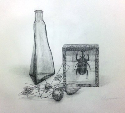植物、カブトムシ、ビン