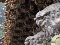 東照宮の獅子