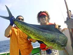 2008バトルドルフィン優勝魚