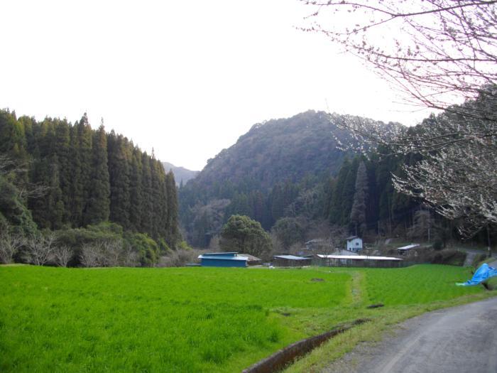 犬飼滝近くの風景