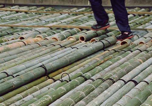 屋上に伐採した竹を敷き詰め3