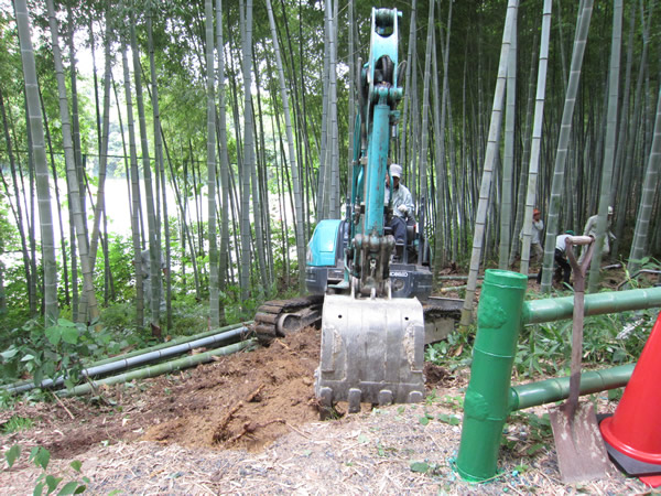 牧野ヶ池緑地 竹林整備で散策道2