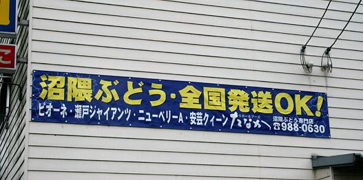 2007年・沼隈ぶどう販売開始!