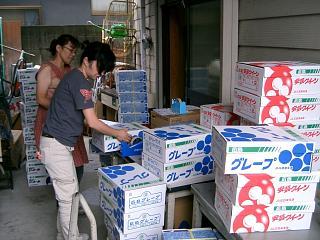 田中商店/沼隈ぶどう発送作業