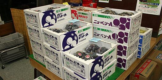 沼隈・田中商店の露地ぶどう販売