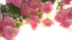 o19.avi_003526526.jpg