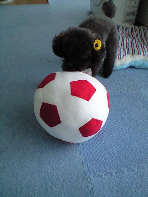Linのボール