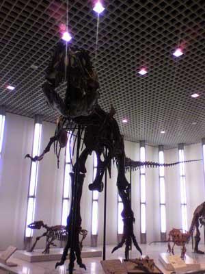 徳島県立博物館〜恐竜