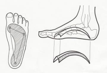 シューフィッターが相談にのります。立ち仕事、学校の先生、保育士さん、美容師さん、理容師さん、調理師さん、工場で安全靴を使用する人など、立ち仕事が長時間にわたる人は、土踏まずやカカトが痛く、ふくらはぎまで痛い。タコやウオノメの痛みで立っていることが辛い。足底筋膜炎をひきおこすこともあります。岐阜のシューフィッターに相談ください。愛知、三重、長野、名古屋、春日井、瀬戸、多治見、可児、中津川、恵那、瑞浪、土岐で安全靴、立ち仕事の靴で痛くて悩んでいる人は、相談ください。インソール(中敷き)で痛みの軽減