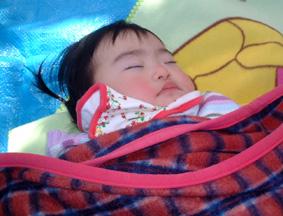 桜の木の下でお昼寝