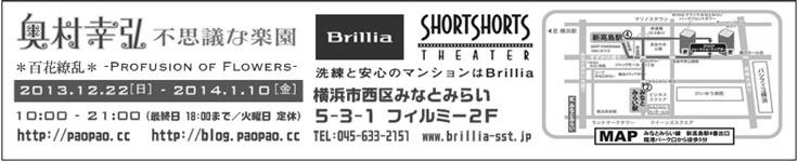 Brillia_2013-14_B